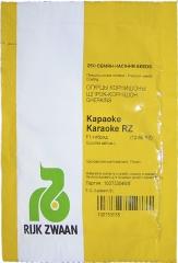 Огірки Караоке F1 (250шт)