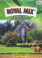 Трава газонна Посухостійка*Royal Mix* (1кг)