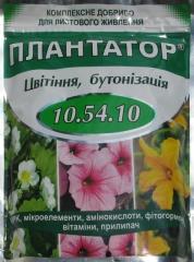 Плантатор 10:54:.10 Цвітіння (1кг)