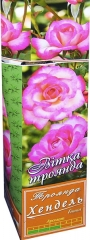 Троянда витка Хендель АА преміум (1шт)