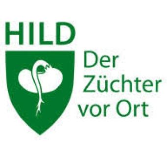 Hild samen( Німеччина)
