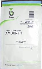 Огірки Амур F1 (1000шт)