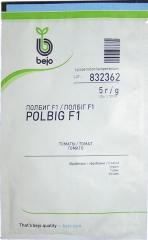 Помідори Полбіг F1 (5 г)