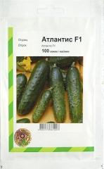 Огірки Атлантіс (100шт)