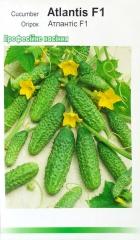 Огірки Атлантіс (15шт)