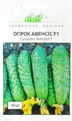 Огірки Авенсіс F 1 (50шт)